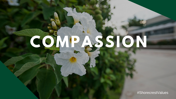 Compassion is a Core Value at Shorecrest preschool St. Petersburg